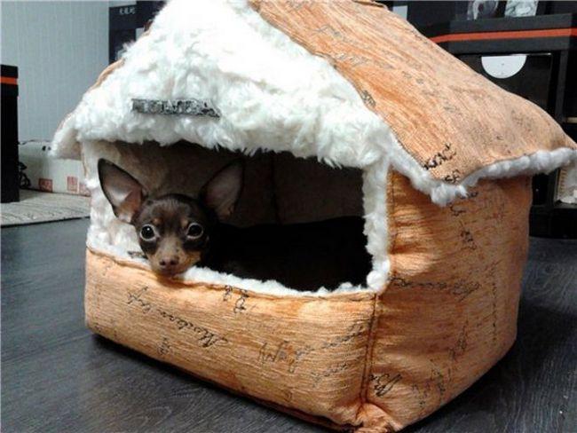 домик для собаки своими рукмаи